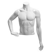 Торс мужской Basic, укороченный размер 48 (материал стеклопластик)